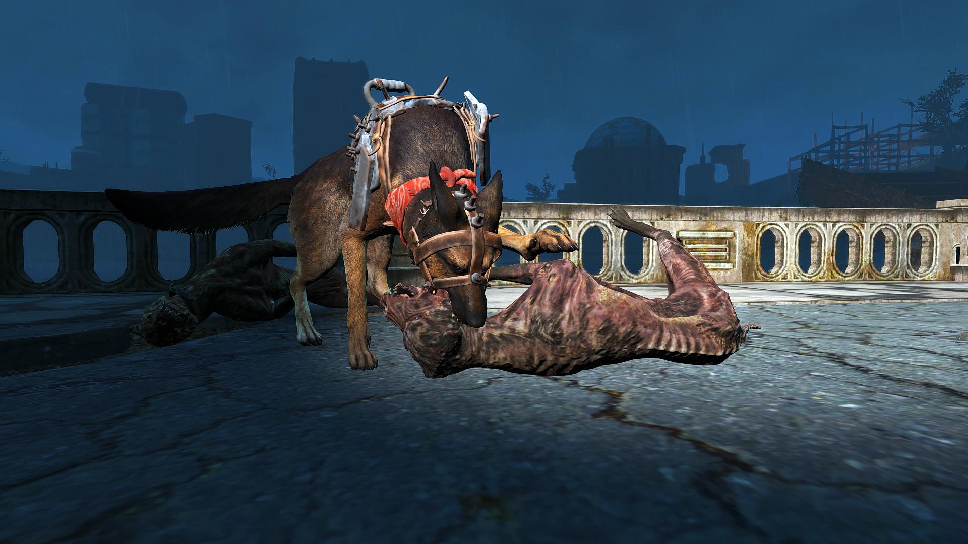 Fallout 4 Screenshot 2018.12.30 - 20.04.57.38.png