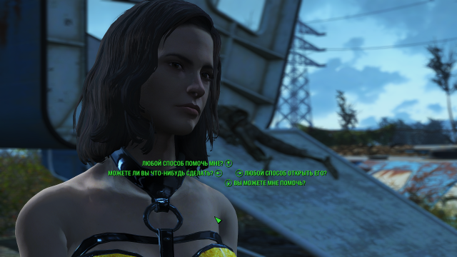 Fallout4 2019-01-31 20-12-05.png