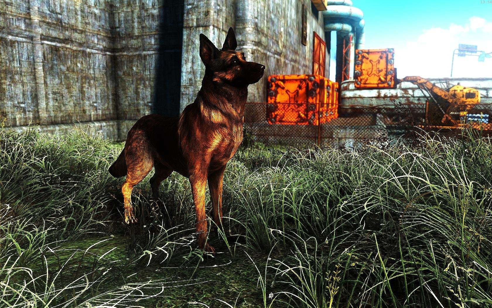 Fallout4 2019-01-19 13-54-19-24