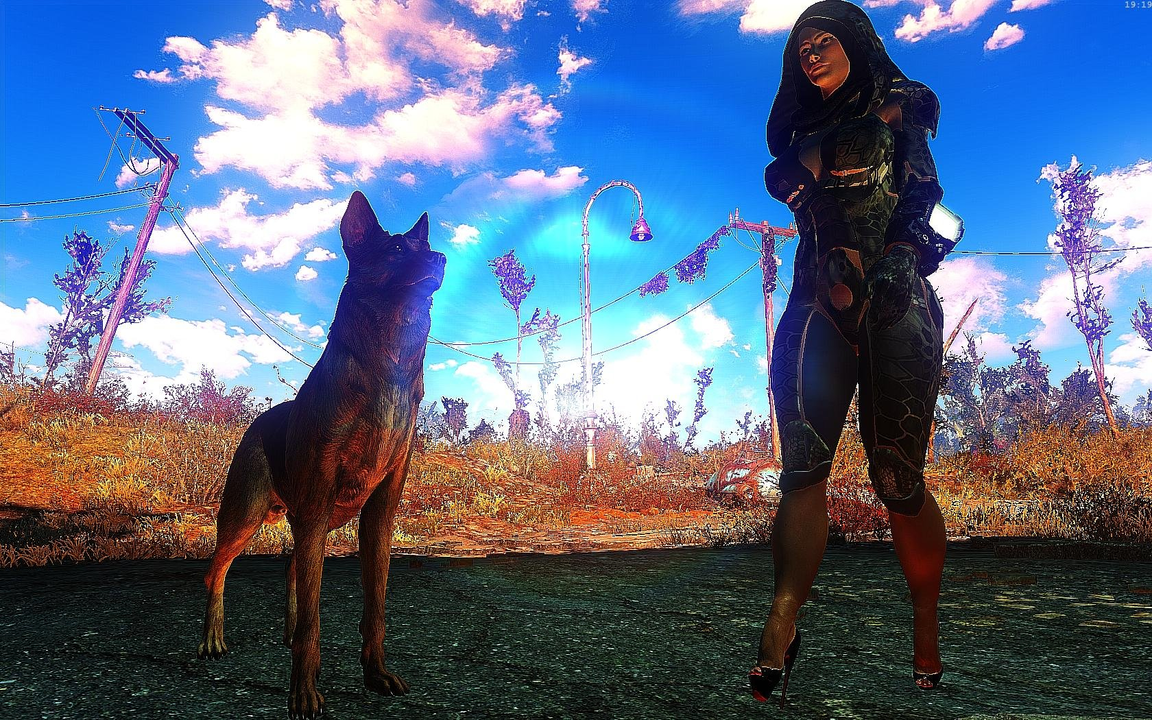 Fallout4 2019-01-15 19-19-58-42