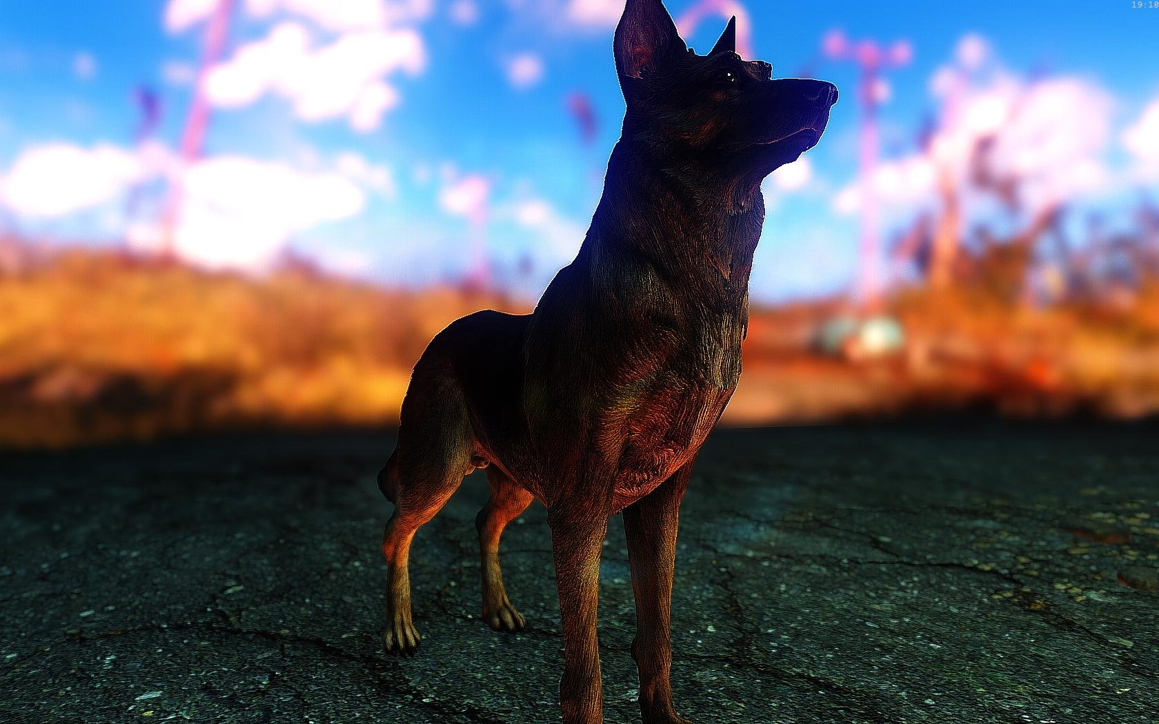 Fallout4 2019-01-15 19-18-55-66