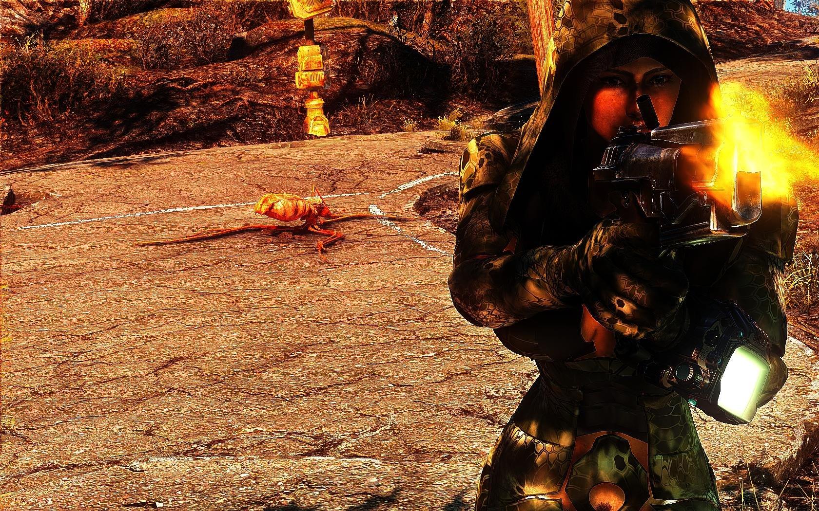 Fallout4 2019-01-15 19-24-14-67