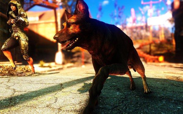 Fallout4 2019-01-15 19-26-48-12