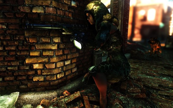 Fallout4 2019-01-15 19-29-46-77