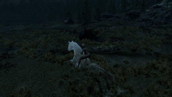 В ночи на призрачном коне