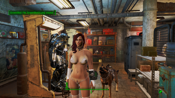 Fallout4 2019-03-03 11-55-46.png