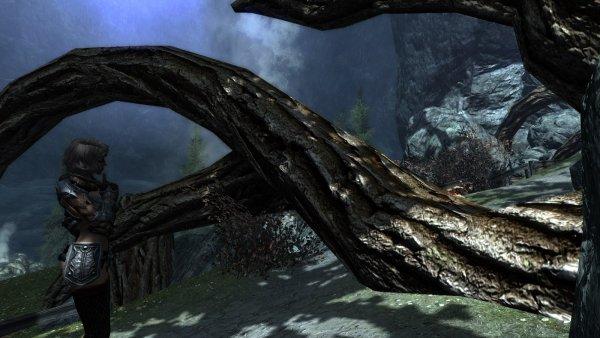 Корни Великого дерева