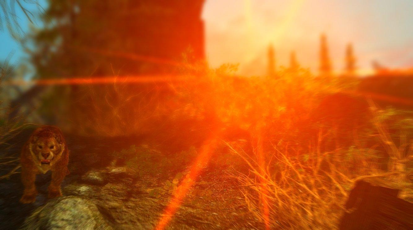 Последние лучи уходящего солнца. Эндерал