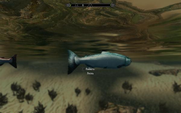 Рыбка плавает по дну...
