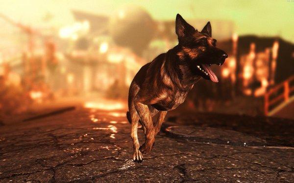 Fallout4 2019-07-23 09-29-00-53
