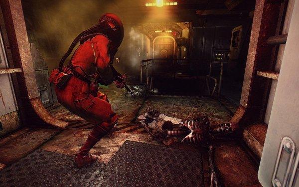 Fallout3 2019-07-29 08-52-54-39