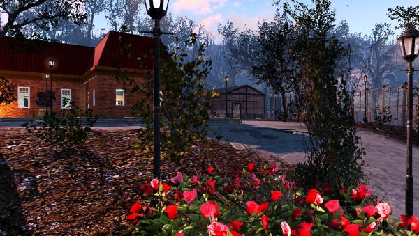 Fallout 4 Сосны у дороги 03.png