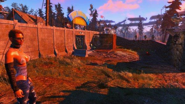 Дама из соц-ослуживания в Альянсе. Fallout4