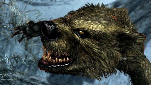 Медведи-оборотни на Солстейме... SkyrimSE