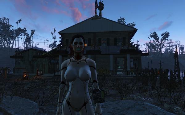 Fallout 4 (AVA)