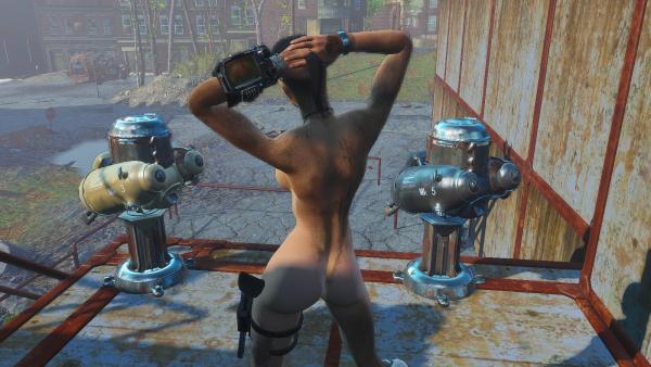 Ева в неподступном форте..  Fallout4