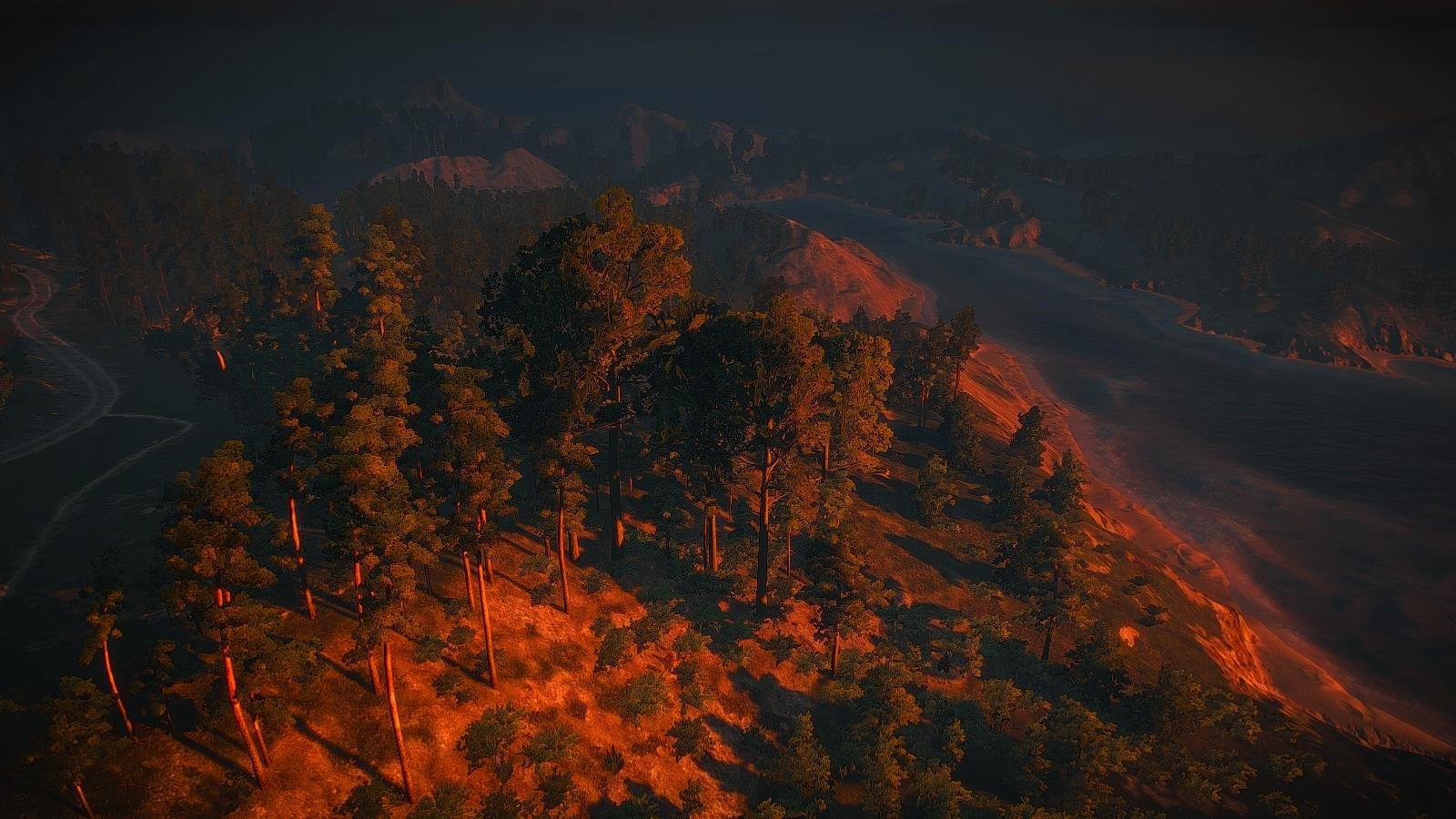 Пейзаж с высоты полёта птицы.. Witcher3