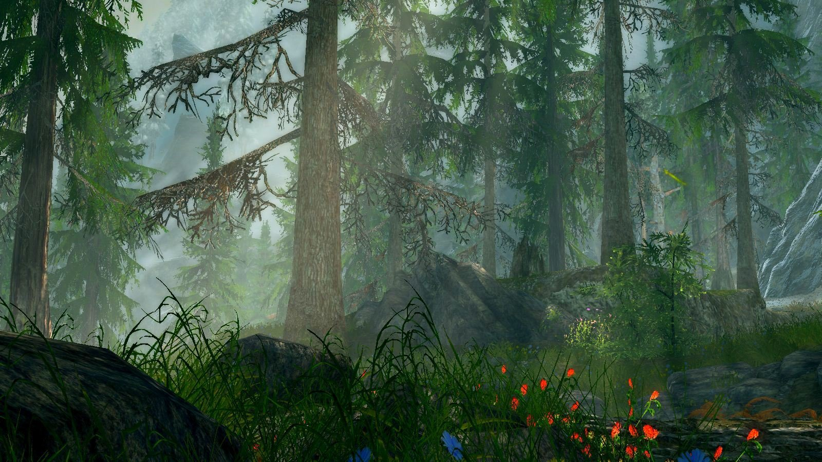 Утро в лесу.. Skyrim SE (сборка 6.0)