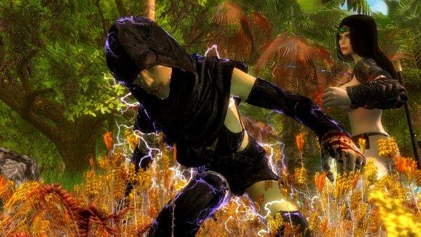 Нора в бою с ведьмой.. SkyrimLE (тропики 4.0)