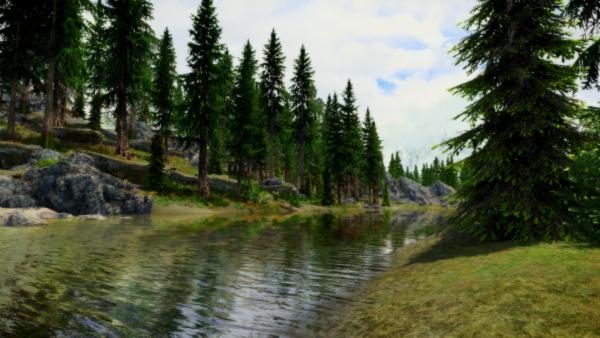 SkyrimSE - Природа рядом с Ривервудом