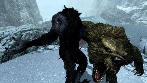 Разборки с медведями-оборотнями.. SSE