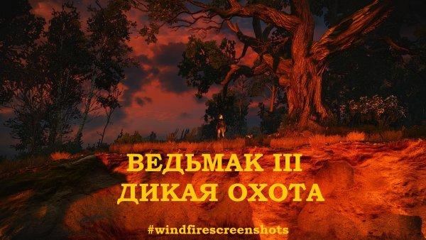 WITCHER III - глазами Windfire