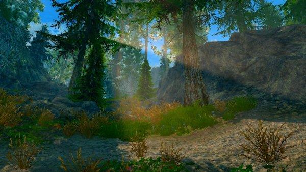 Ранним утром в лесу... (сборка 6.0 ЛЕТО)