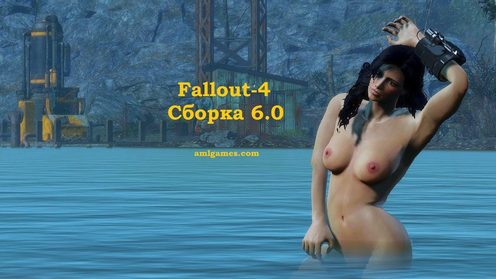 Обложка (4). Fallout-4 (сборка 6.0)