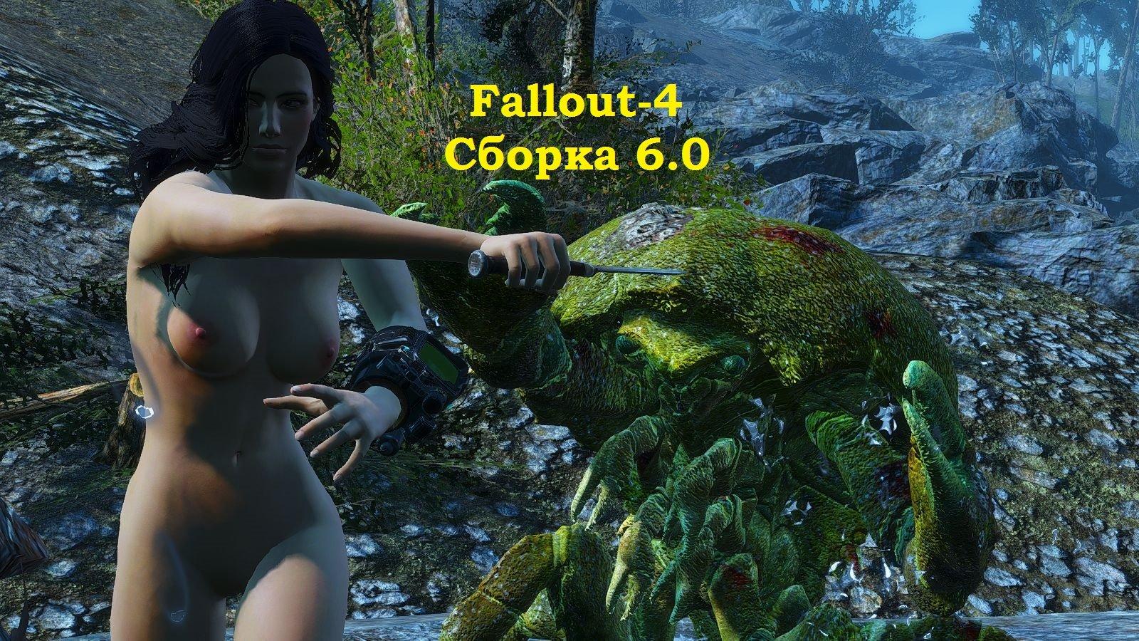 Обложка (1) Fallout-4 (сборка 6.0)
