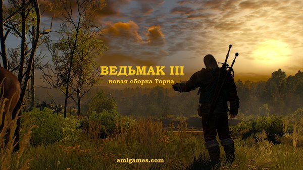 ВЕДЬМАК III  (сборка Торна)