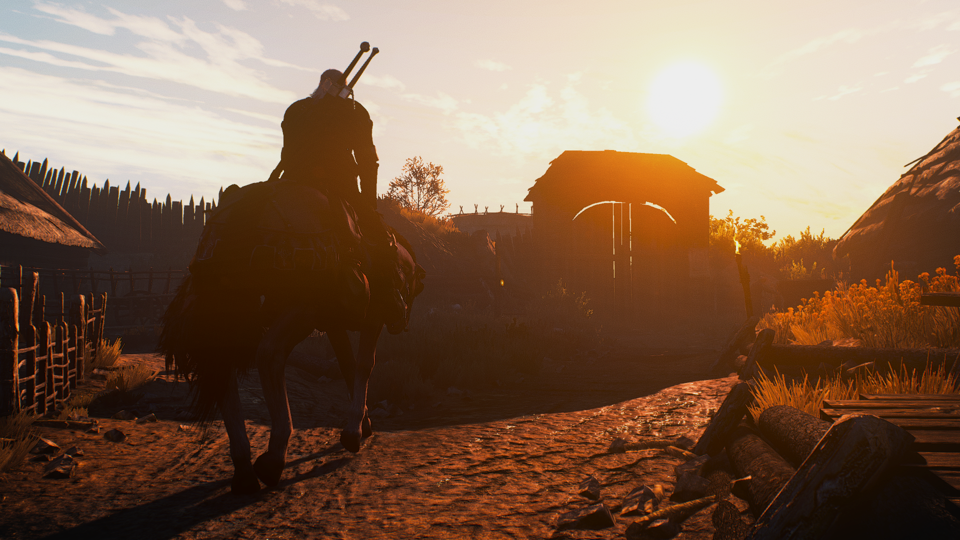 The Witcher 3 Screenshot 2020.05.01 - 02.24.06.59.png