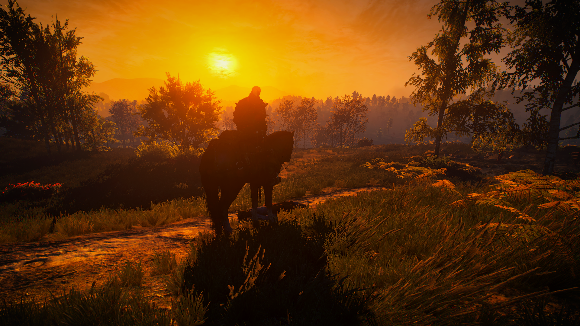 The Witcher 3 Screenshot 2020.05.08 - 21.09.50.93.png