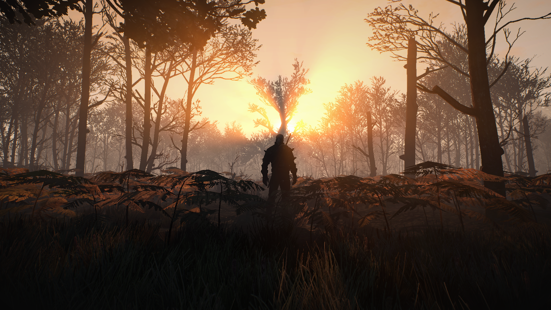 The Witcher 3 Screenshot 2020.05.09 - 01.18.21.72.png