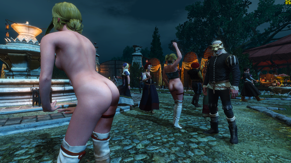 The Witcher 3 Screenshot 2020.06.30 - 19.16.59.78.png