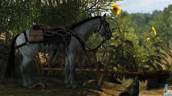 Боевой конь.. Ведьмак III (сборка Торна)