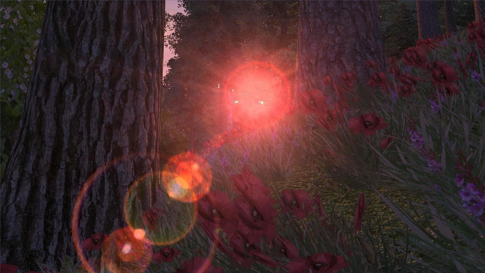 Утро в лесу.. OBLIVION (Сборка 4.0)