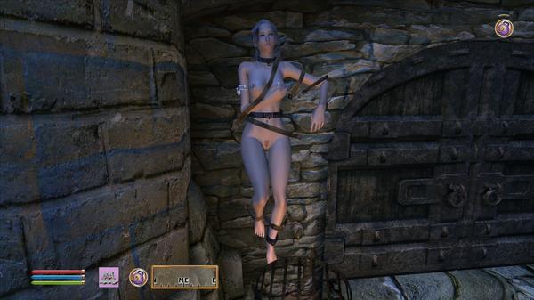 Elder Scrolls IV  Oblivion Screenshot 2020.10.03 - 01.51.19.20.png