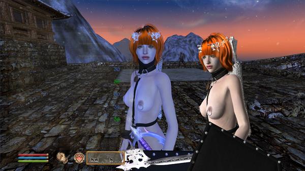 Elder Scrolls IV  Oblivion Screenshot 2020.10.03 - 13.09.26.49.png