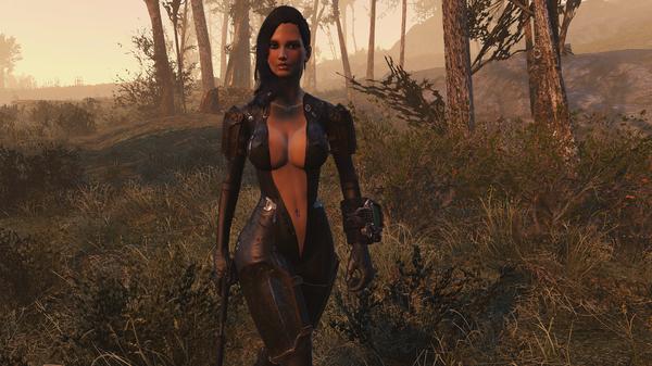 Fallout 4 Screenshot 2020.10.29 - 17.18.10.24.png