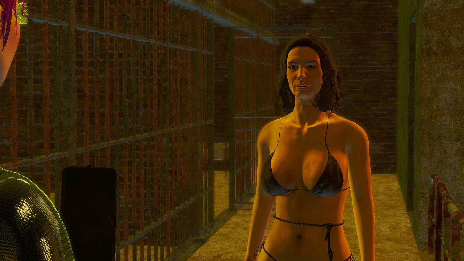 Спасаем пленницу из тюрьмы.. Fallout-4 (Сборка 6.4)