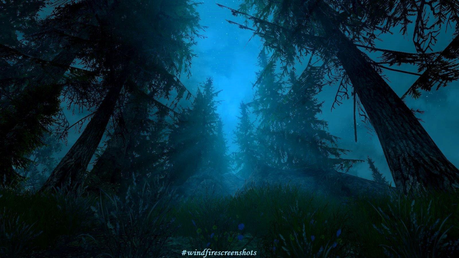 Ночной лес.. SkyrimSE (сборка 6.0)