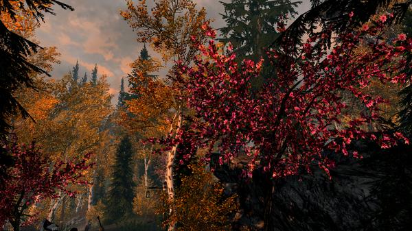 Elder Scrolls V  Skyrim Screenshot 2020.11.24 - 22.22.42.81.png
