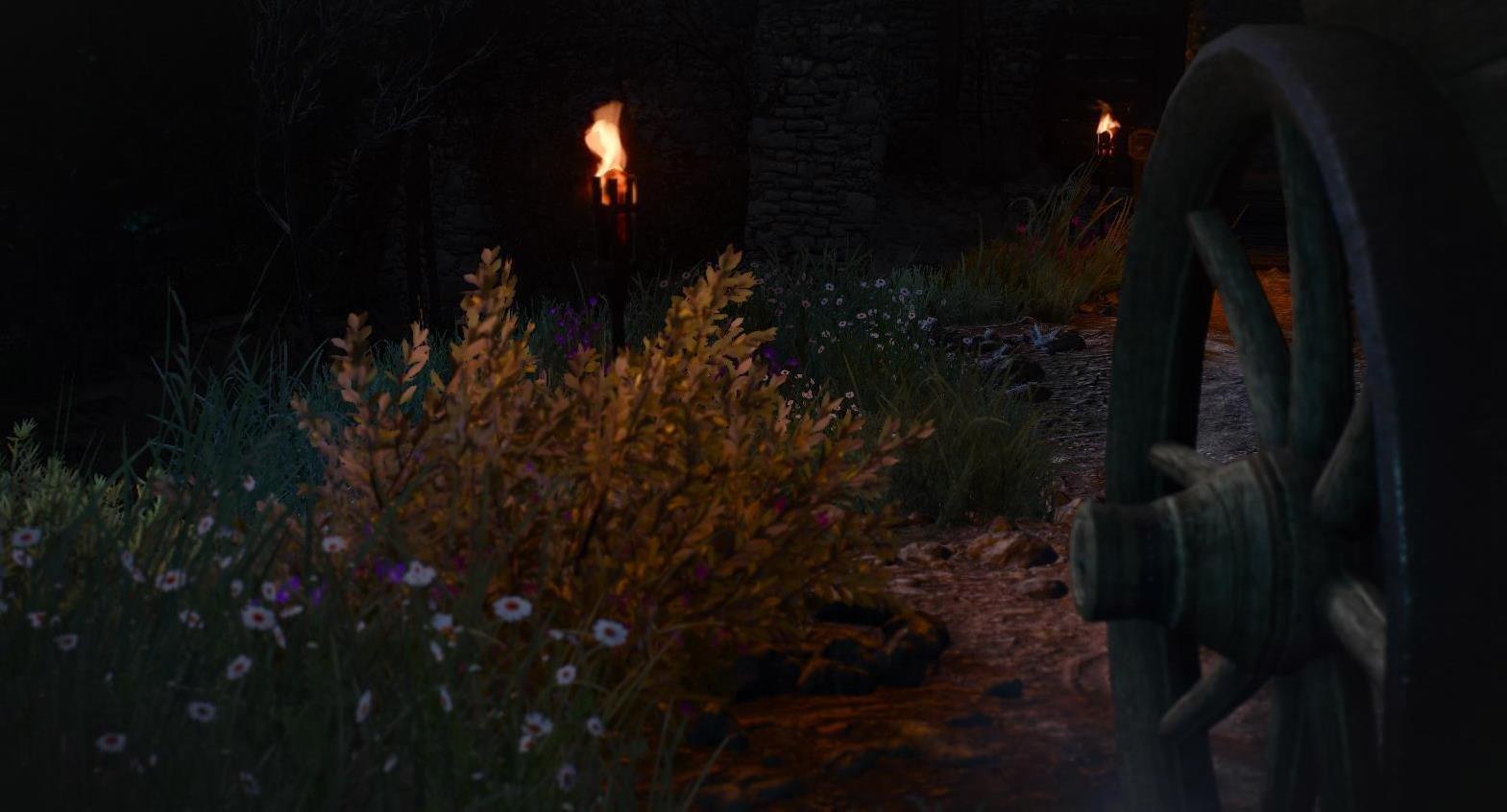 Ночью.. Ведьмак III (сборка Торна)