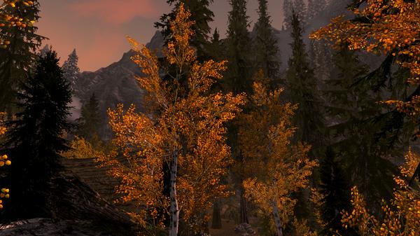 Elder Scrolls V  Skyrim Screenshot 2020.12.01 - 21.40.02.29.png