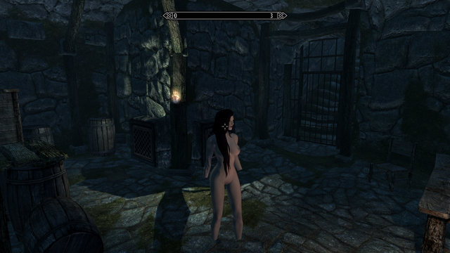 Elder Scrolls V  Skyrim Screenshot 2021.01.17 - 14.44.45.97.png