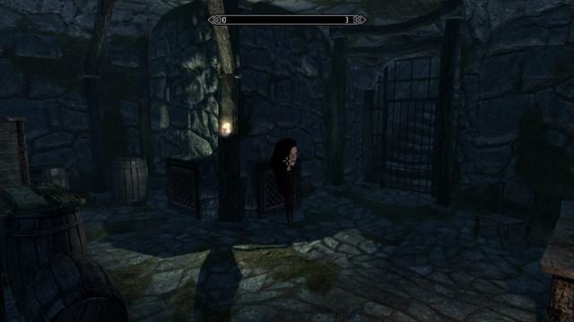 Elder Scrolls V  Skyrim Screenshot 2021.01.17 - 14.45.09.40.png