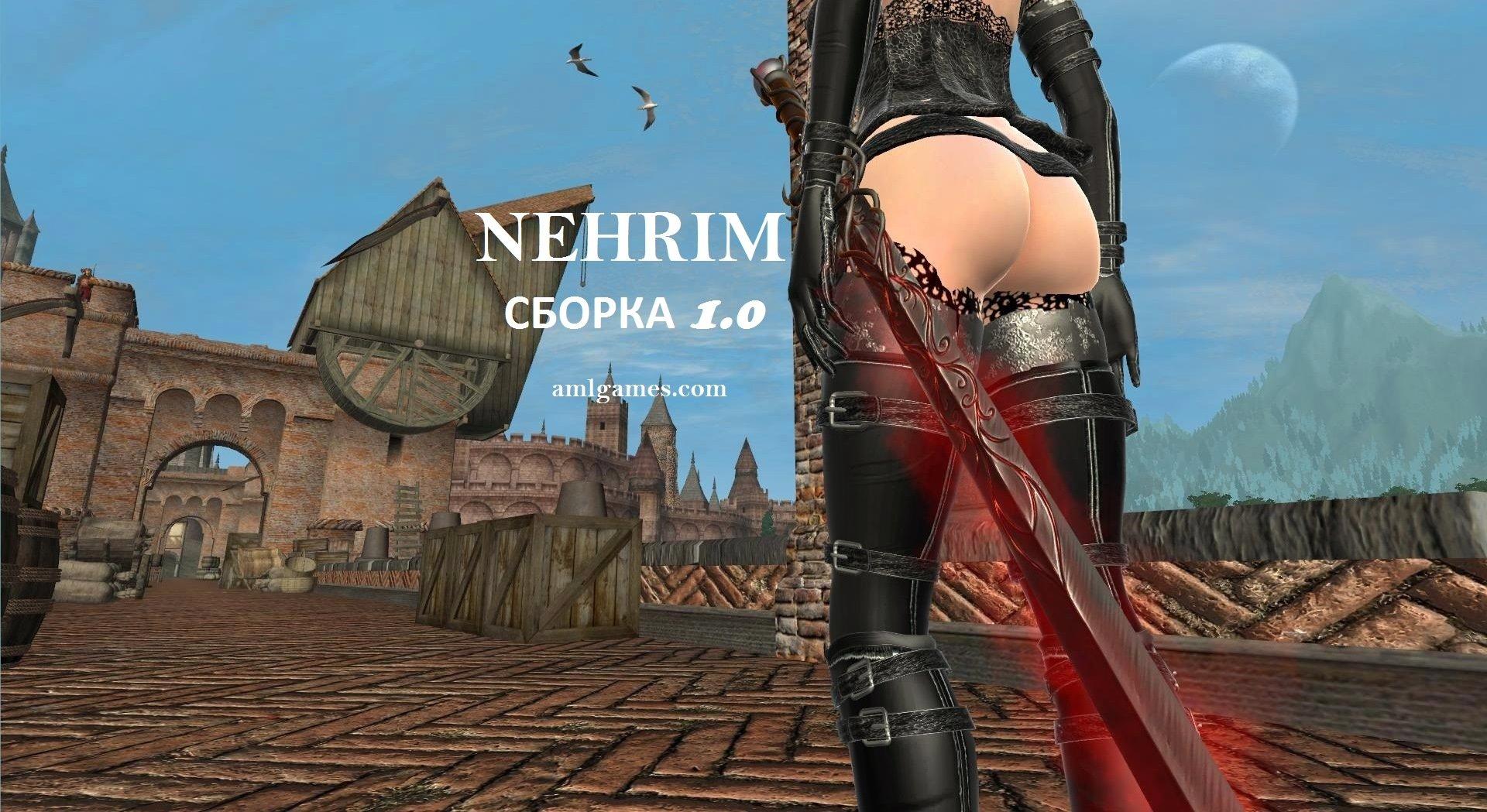 Обложка-1. НЕРИМ 1.0