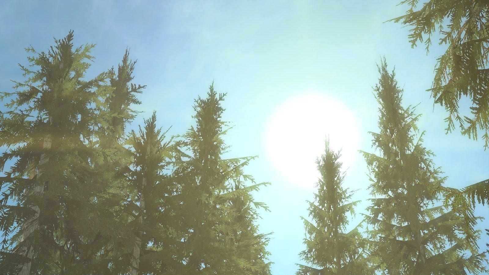 Яркое дневное солнце.. SkyrimSE (сборка 6.0)