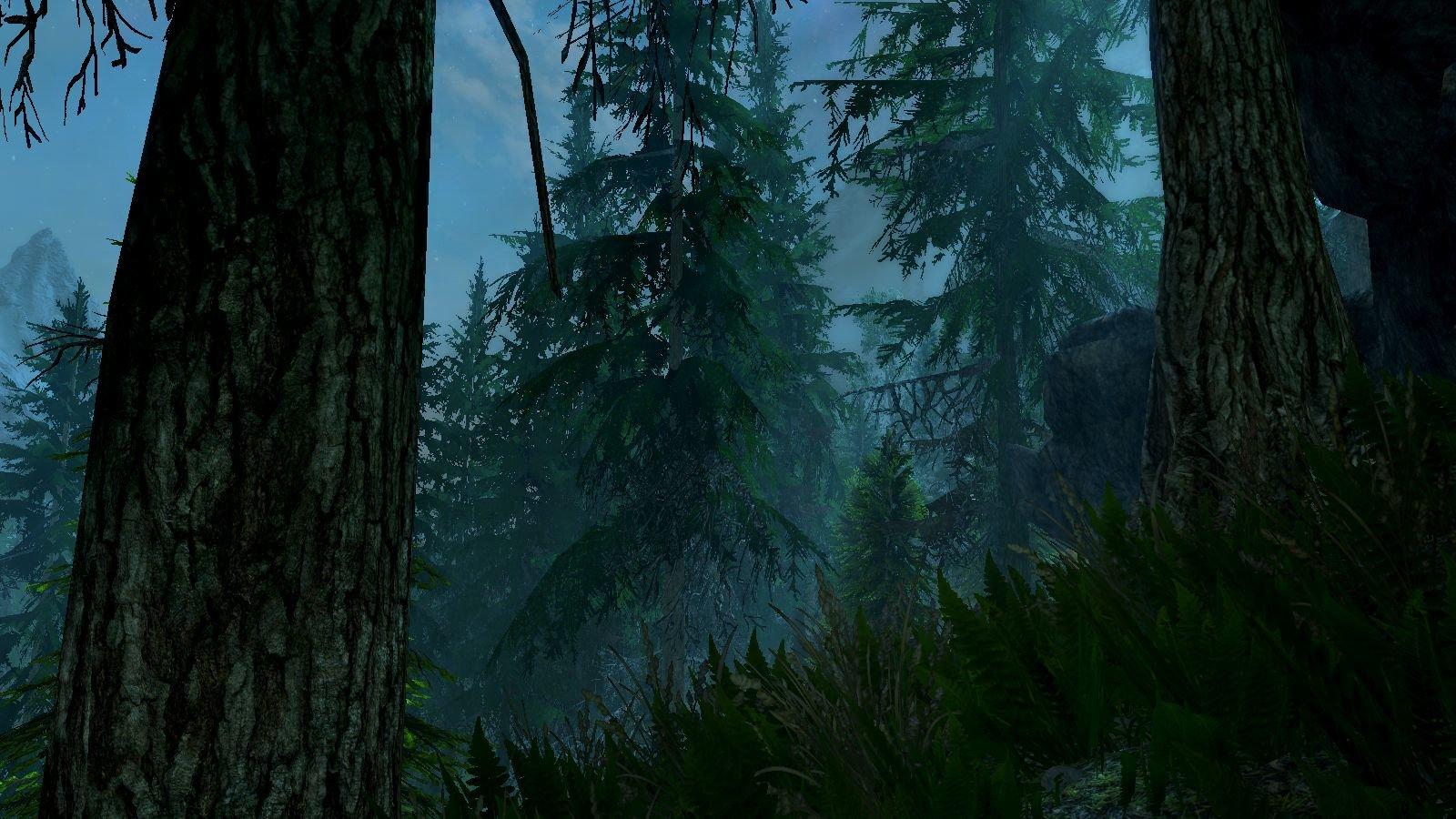 Ночной лес..