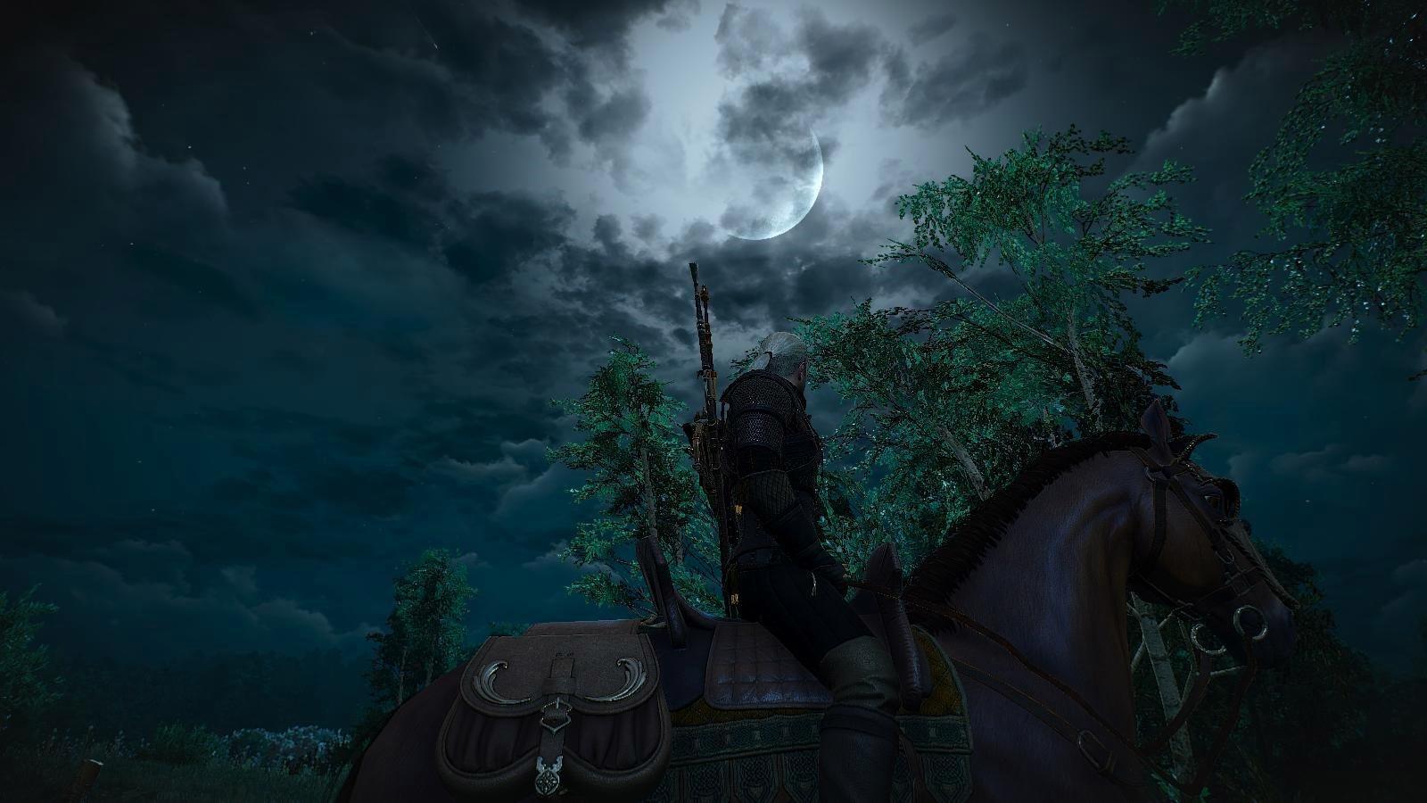 А ночка лунная была.. Ведьмак III (сборка Торна)